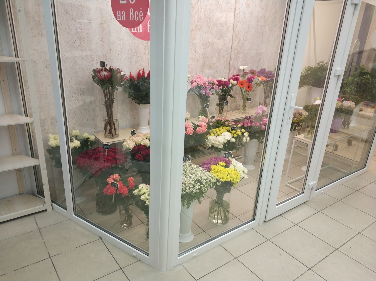 Камера для цветов для «сеть магазинов «Лаванда», «Колибри», «Зеленый дом», «Юг-Агро»